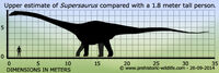Supersaurus-size