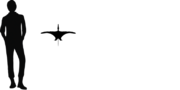1wukongopterus size