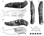 Гилеозавр 12