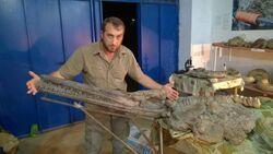 Журналист Тимур Абдуллаев с черепом Дагестанского ихтиозавра