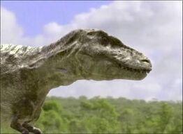 Тарбозавр в ВВС