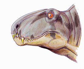 275px-Bathygnathus head1DB