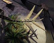 Гесперозавр 10