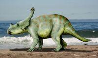 Vagaceratops NT