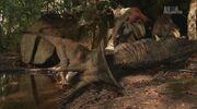 When Dinosaurs Roamed America Dromaeosaurus