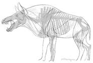 Entelodont hell pig by wingedwolf94-dbisxvc