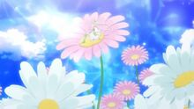 Cure Felice on top of a daisy
