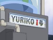 Placa yuriko