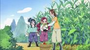 Las chicas recolectando maíz