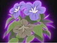Flor corazon browballia