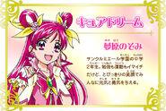 Cartel de Cure Dream en Pretty Cure All Stars New Stage 3