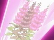 Flor corazon dedalera
