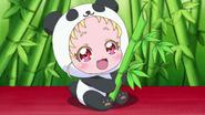 Хаг-тан панда