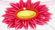 STPC3.53-La lágrima de Fuwa cae sobre la flor