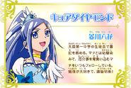 Cartel de Cure Diamond en Pretty Cure All Stars New Stage 3
