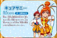 Cure Sunny Kiseki no Mahou