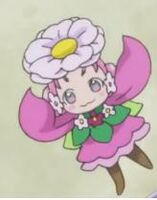 Ha-chan flower