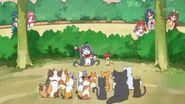 30. Miss Shamour con Kuroro junto a algunos gatos de callejon