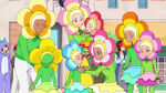 STPC37 The Amamiya family