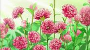 Flores que estan al cuidado de Tsubomi