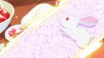 KKPCALM 01 Bunny inspiration