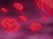 Rosas explosivas zakenna
