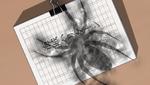 YPC516 Arachnea manuscript