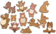 MTPC movie-BD art gallery-27-Bears