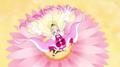 GPPC Princess of Blooming Flowers