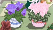 Flores rin y karen
