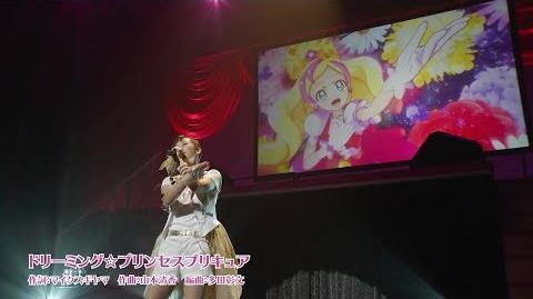 KiraKira☆Precure LIVE 2017 〜Sweet&Cute〜 07 - Dreaming☆Princess Precure (@PrettyTrad)