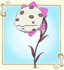 Flor namedaifuku