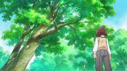 Michio ve dos telarañas con rocio