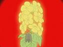 HPC29.Flower