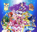 Yes! Pretty Cure 5 GoGo