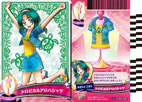 HCPC-card-set4-28