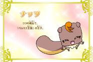 Cartel de Natts en Pretty Cure All Stars New Stage 3