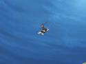FwPC04 - Nagisa rides a turtle