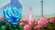 YPC5GG38 - Syrup's memory of a red rose and a blue rose