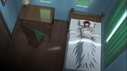 Phantom yace dormido en una habitación