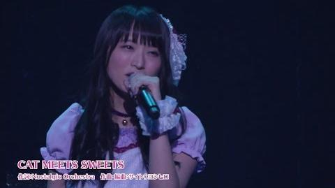 KiraKira☆Precure LIVE 2017 〜Sweet&Cute〜 10 - CAT MEETS SWEETS (@PrettyTrad)