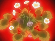 Flor corazon fresa