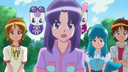 Happiness-Charge-Precure-Ep-29-Img-0011