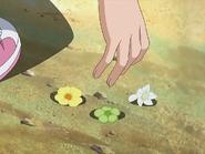 Flores hikari quita bell