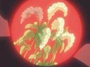 Flor corazón flor de espinaca