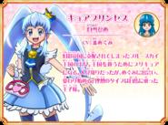 Cure Princess perfil Recuerdos de All Stars