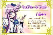 Cartel de Cure Moonlight en Pretty Cure All Stars New Stage 3