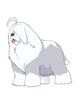 Yeti profile