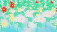 Las flores crezen...
