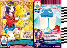HCPC-card-set2-39